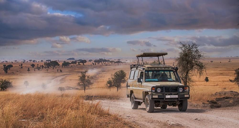 Ces voitures qui sont adaptées pour faire du safari